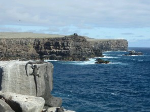 Day 5 - Marine Iguanas cling to the cliffsides of Espanola