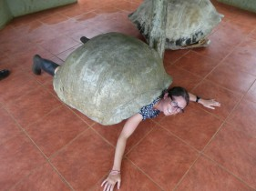 Day 8 - Helen being a splayed tortoise