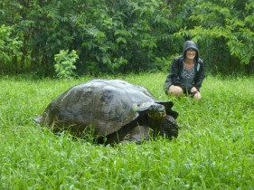 Day 8 - Tortoises at the reserve roam free in their natural habitat